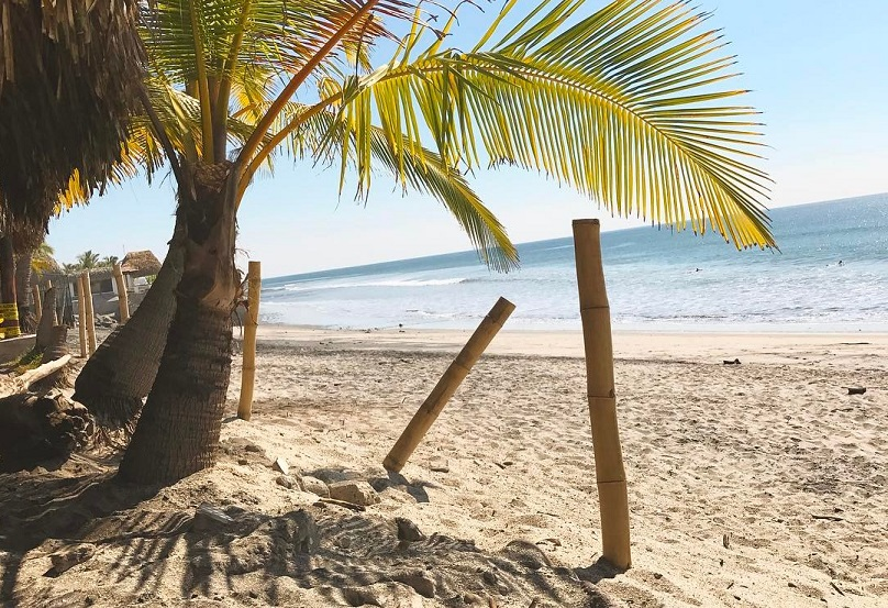 el palmar playa surf panama