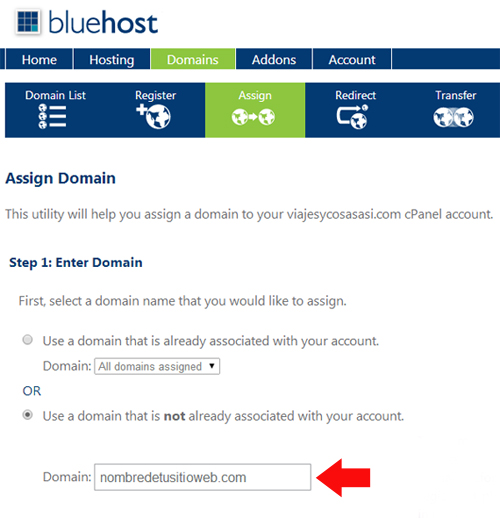 Assign Domain bluehost