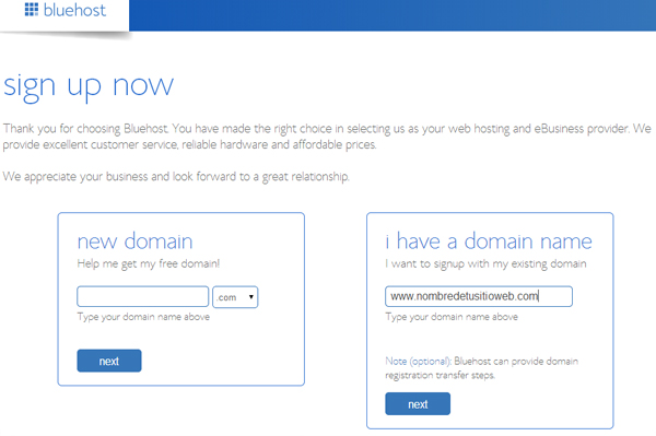 hosting i have a domain name
