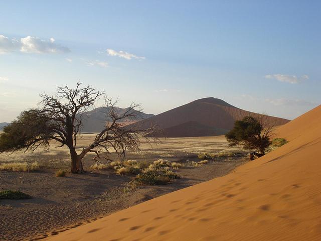 Región de Sossusvlei, Namibia