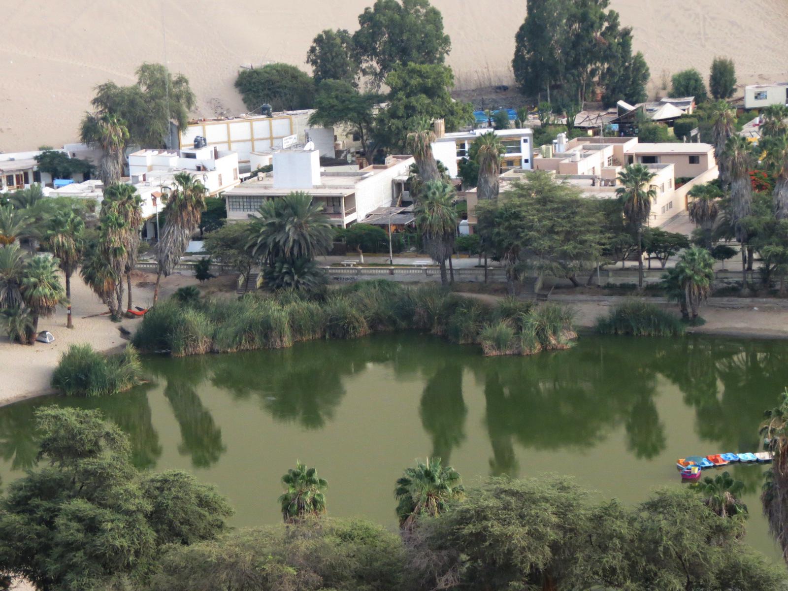 laguna oasis huacachina